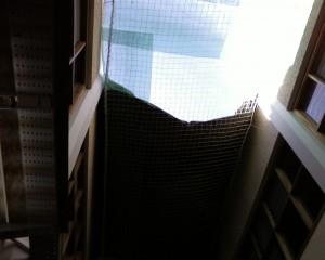 Contemplad el techo de la facultad